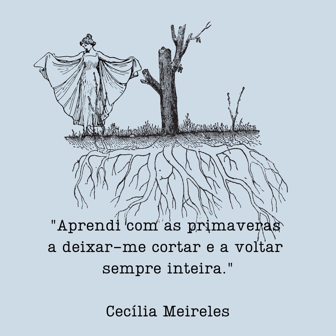 """""""Aprendi com as primaveras a deixar-me cortar a voltar sempre inteira"""" - Cecília Meireless"""
